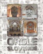 Orgle Slovenije