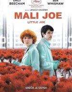 Mali Joe