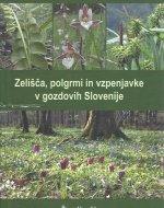 Zelišča, polgrmi in vzpenjavke v gozdovih Slovenije …
